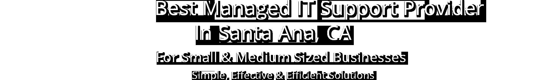 Santa Ana IT Support